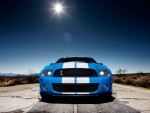 2010 Ford Shelby GT500